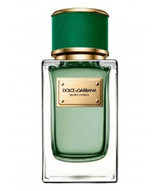 Dolce Gabbana Velvet Collection Velvet Cypress EDP 150 ml Erkek Parfüm
